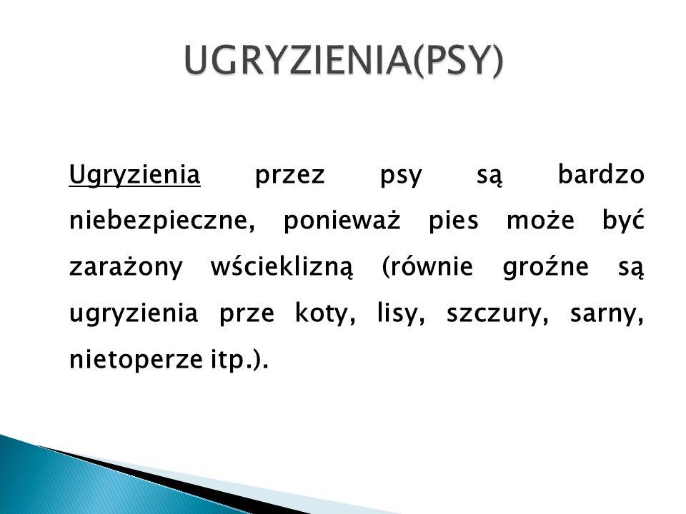 UGRYZIENIA(PSY)