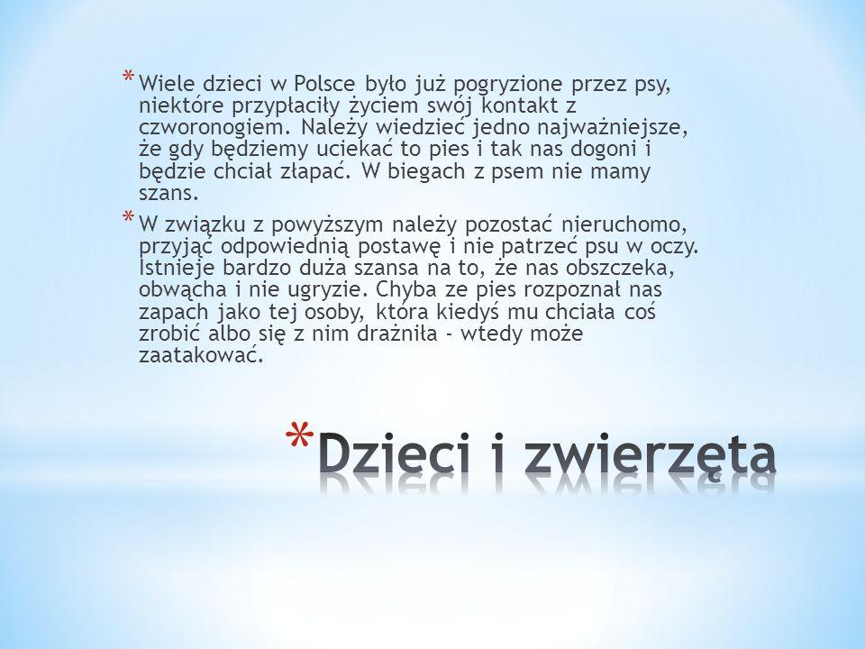 Wiele dzieci w Polsce było już pogryzione przez psy, niektóre przypłaciły życiem swój kontakt z czworonogiem. Należy wiedzieć jedno najważniejsze, że gdy będziemy uciekać to pies i tak nas dogoni i będzie chciał złapać. W biegach z psem nie mamy szans.