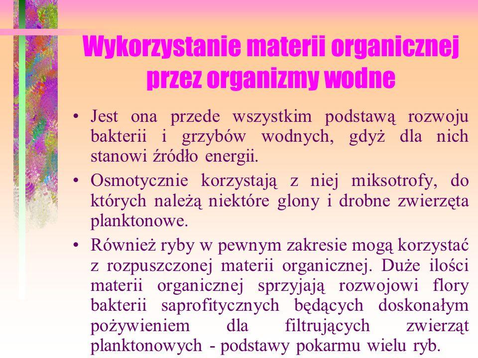 Wykorzystanie materii organicznej przez organizmy wodne
