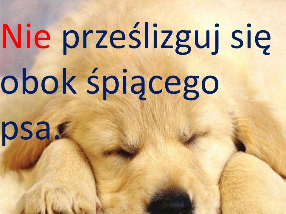 Nie prześlizguj się obok śpiącego psa.