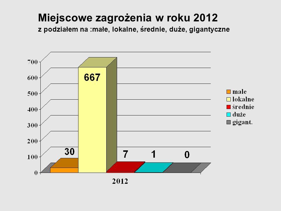 Miejscowe zagrożenia w roku 2012