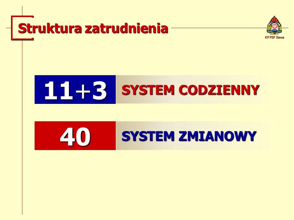 11+3 40 Struktura zatrudnienia SYSTEM CODZIENNY SYSTEM ZMIANOWY