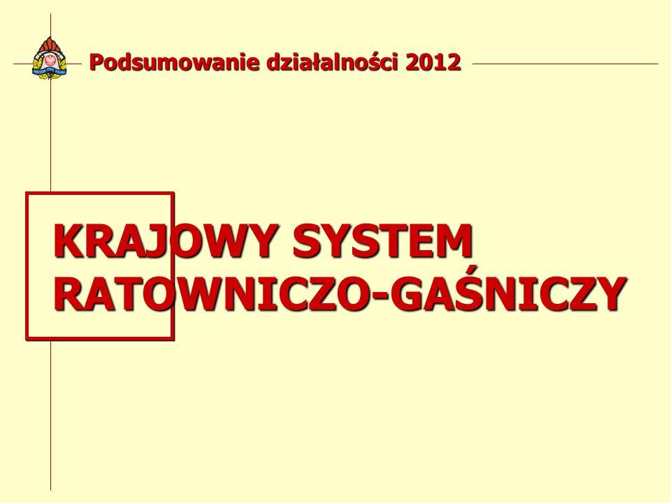 Podsumowanie działalności 2012