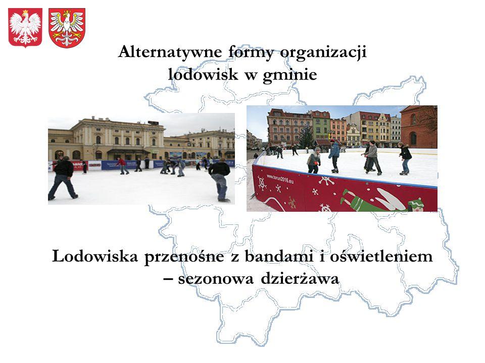 Alternatywne formy organizacji lodowisk w gminie