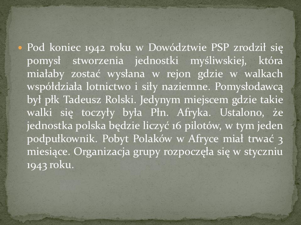 Pod koniec 1942 roku w Dowództwie PSP zrodził się pomysł stworzenia jednostki myśliwskiej, która miałaby zostać wysłana w rejon gdzie w walkach współdziała lotnictwo i siły naziemne.