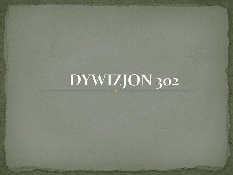 DYWIZJON 302