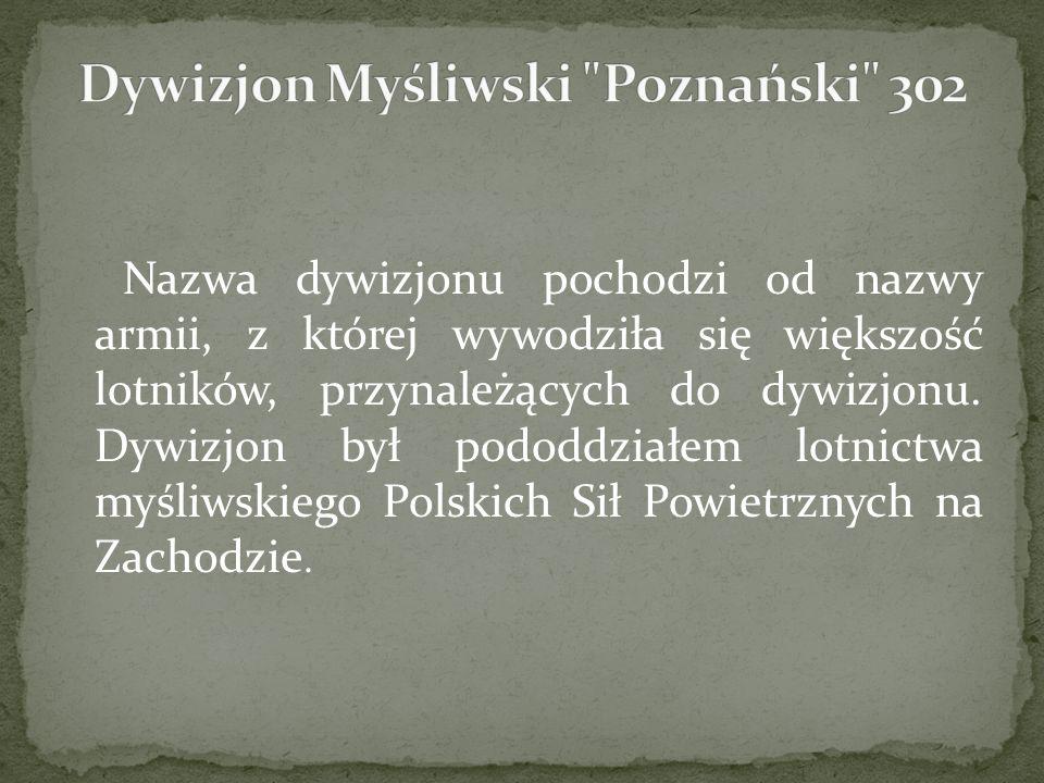 Dywizjon Myśliwski Poznański 302