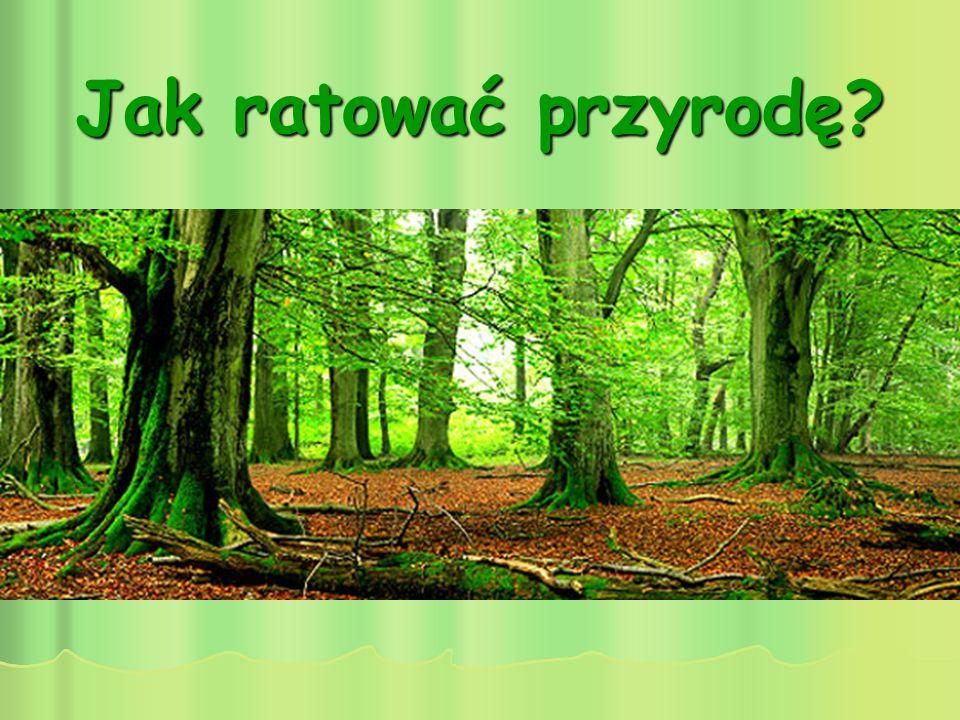 Jak ratować przyrodę