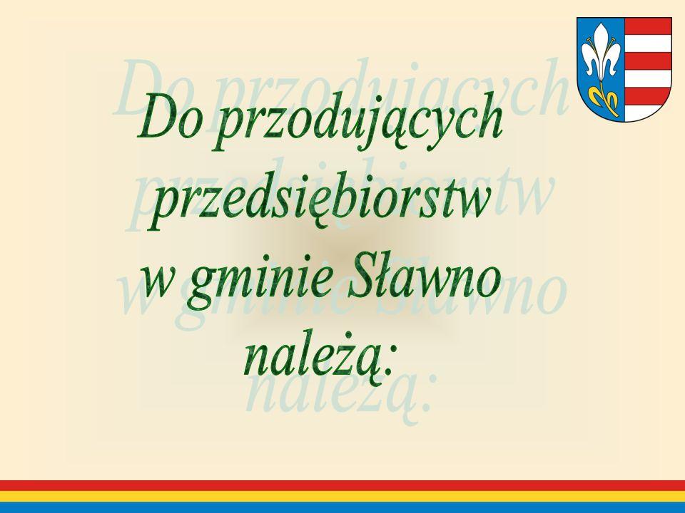 Do przodujących przedsiębiorstw w gminie Sławno należą:
