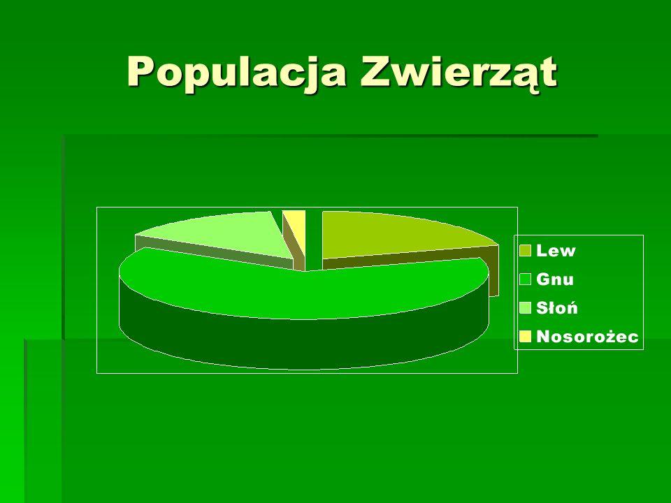 Populacja Zwierząt