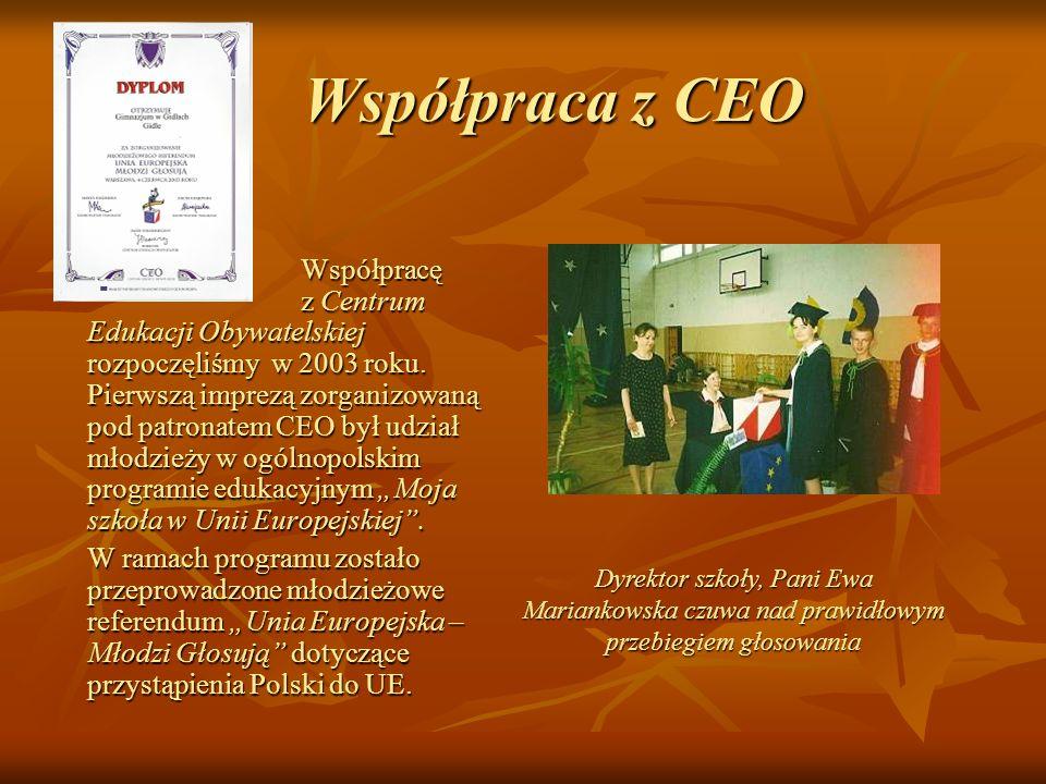 Współpraca z CEO