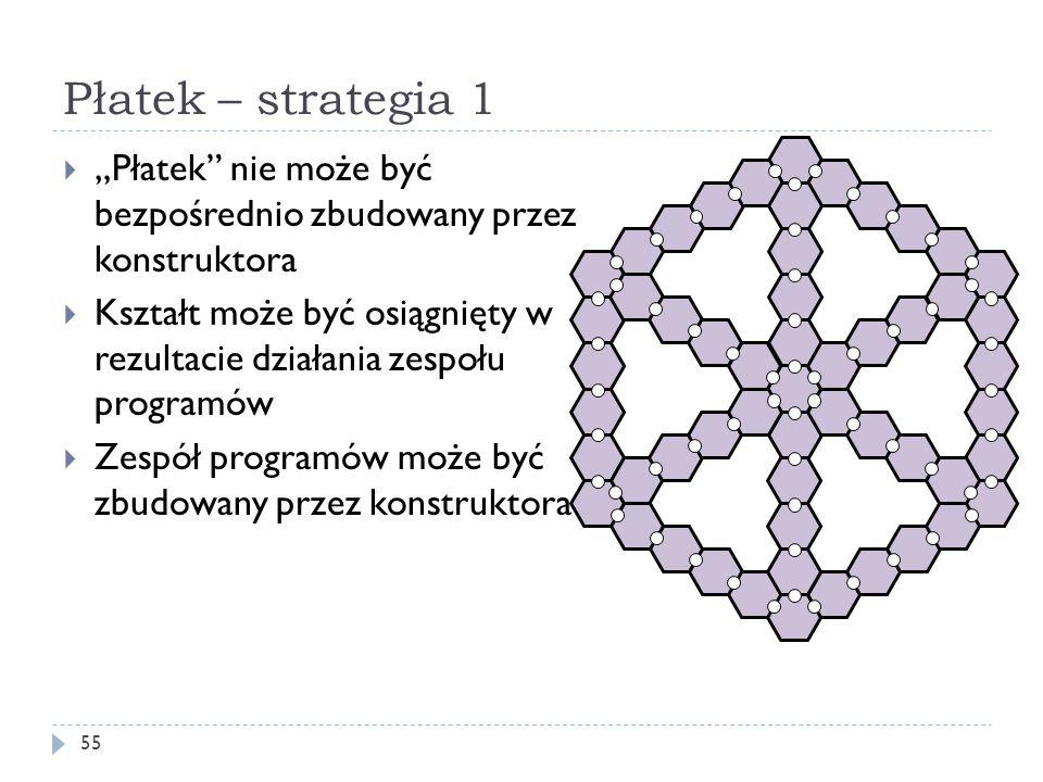 """Płatek – strategia 1 """"Płatek nie może być bezpośrednio zbudowany przez konstruktora."""