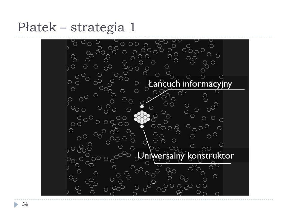 Płatek – strategia 1 Łańcuch informacyjny Uniwersalny konstruktor