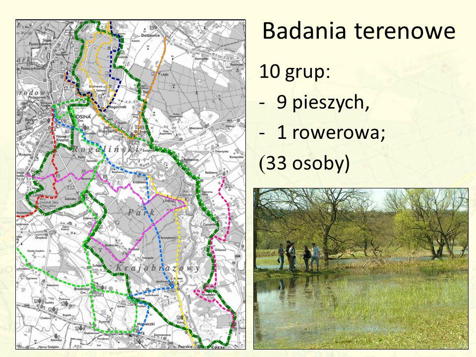 Badania terenowe 10 grup: 9 pieszych, 1 rowerowa; (33 osoby)