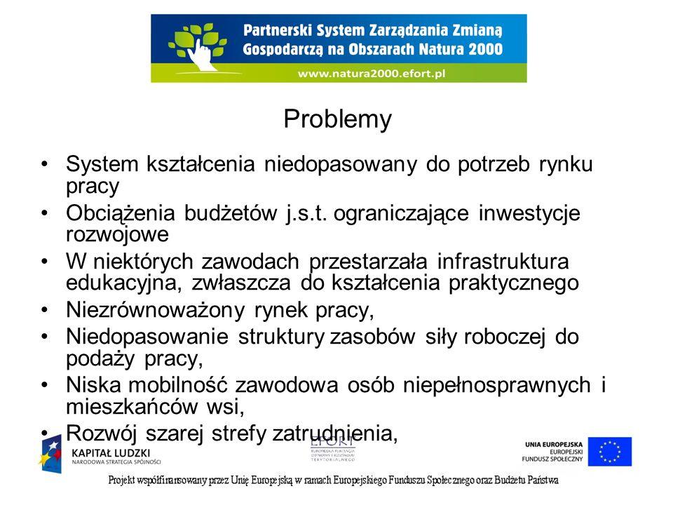Problemy System kształcenia niedopasowany do potrzeb rynku pracy