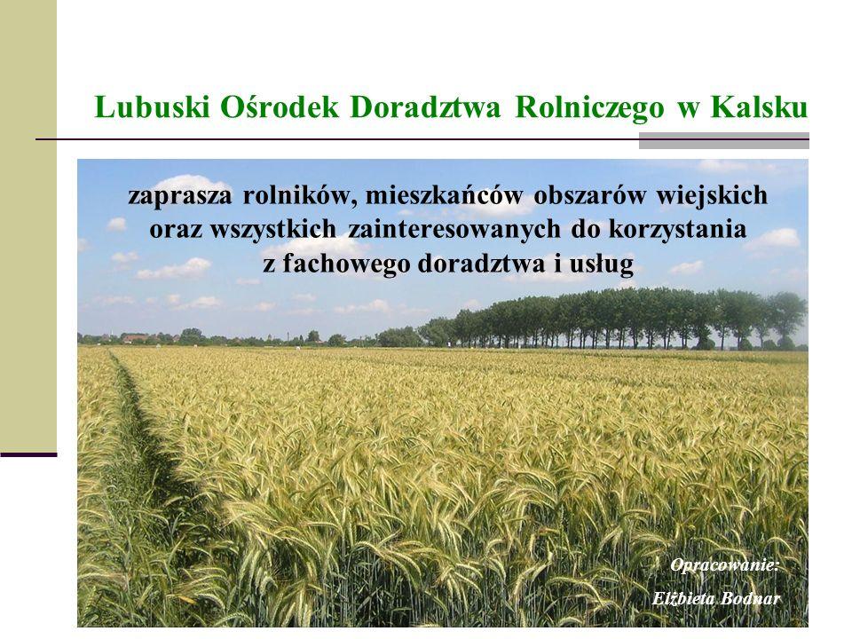 Lubuski Ośrodek Doradztwa Rolniczego w Kalsku