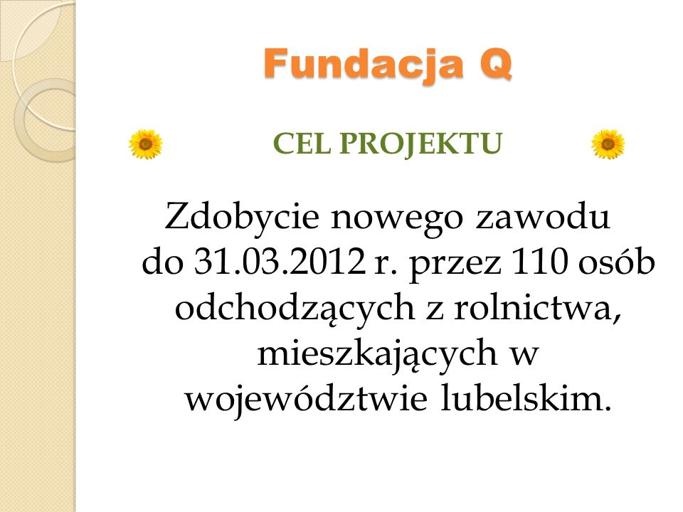 Fundacja Q CEL PROJEKTU.