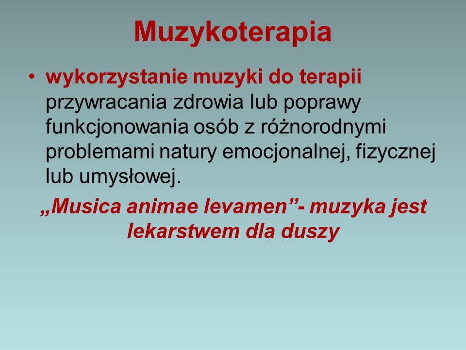 """""""Musica animae levamen - muzyka jest lekarstwem dla duszy"""