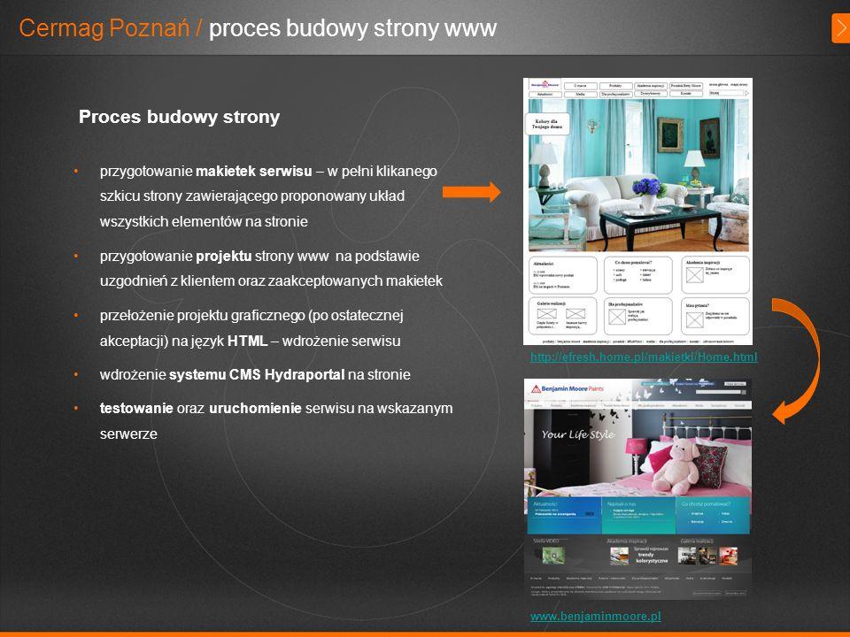 Cermag Poznań / proces budowy strony www