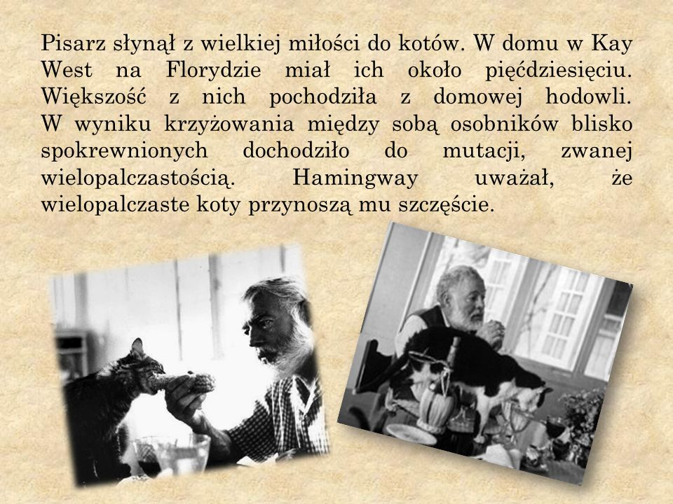Pisarz słynął z wielkiej miłości do kotów