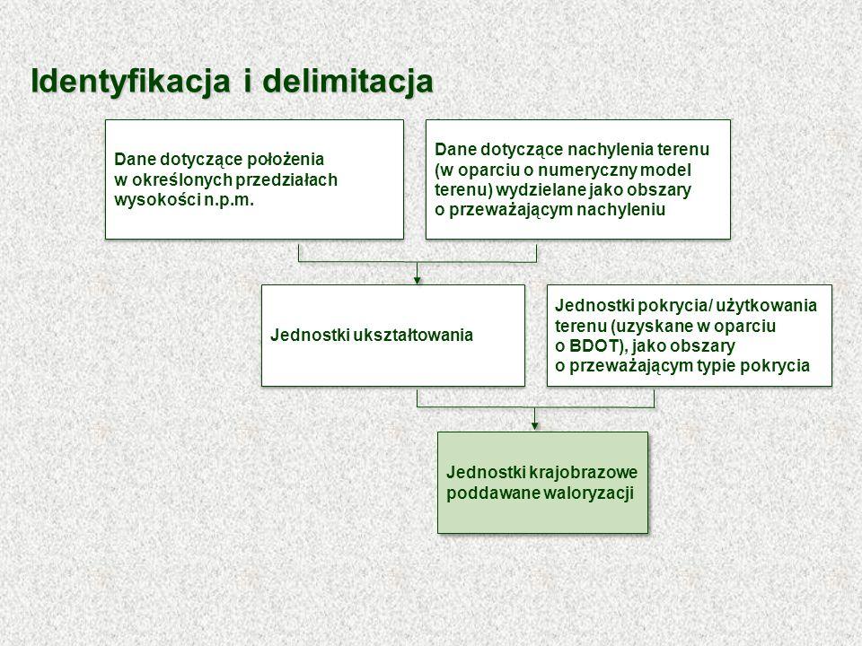 Identyfikacja i delimitacja