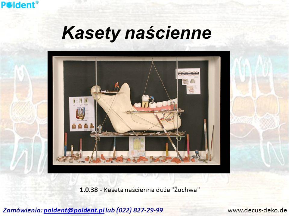 Kasety naścienne 1.0.38 - Kaseta naścienna duża Żuchwa