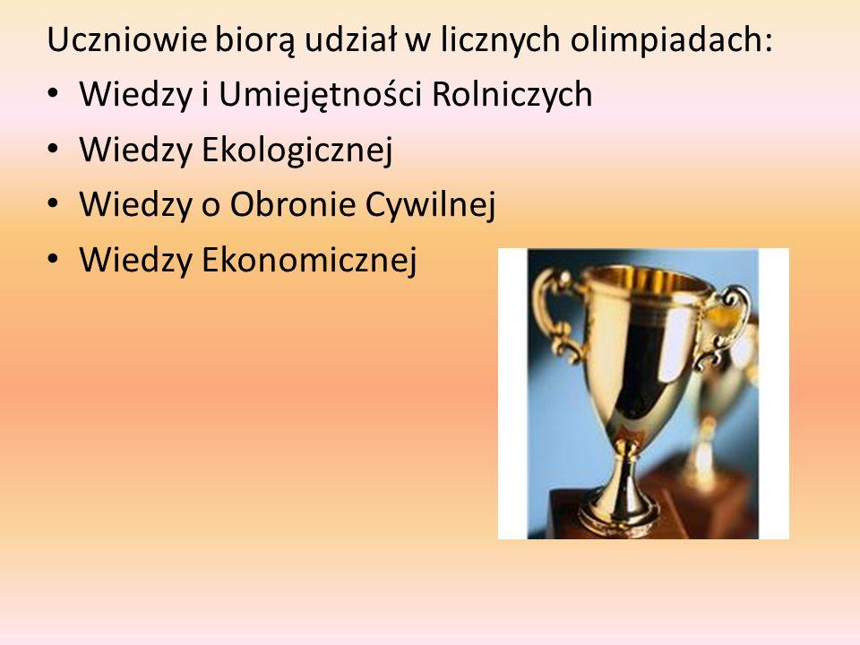 Uczniowie biorą udział w licznych olimpiadach: