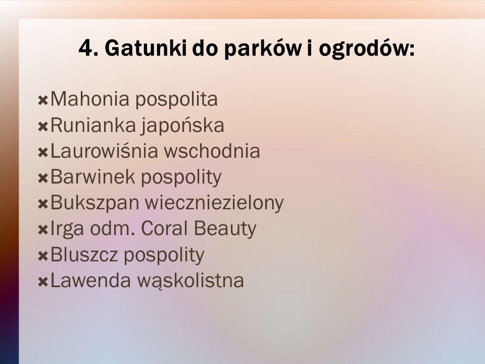 4. Gatunki do parków i ogrodów: