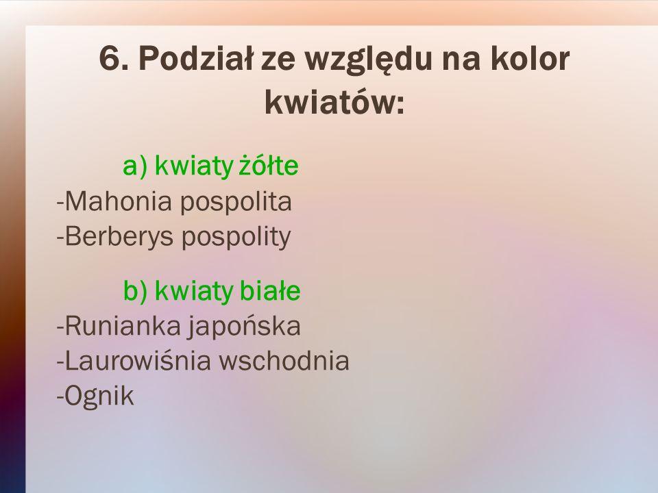6. Podział ze względu na kolor kwiatów: