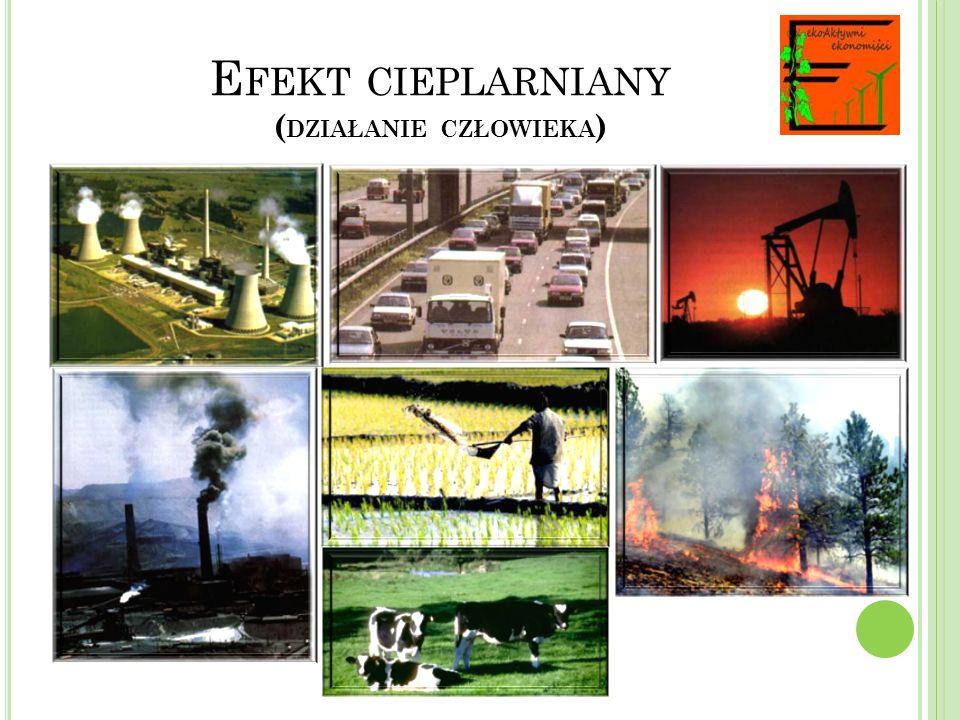Efekt cieplarniany (działanie człowieka)