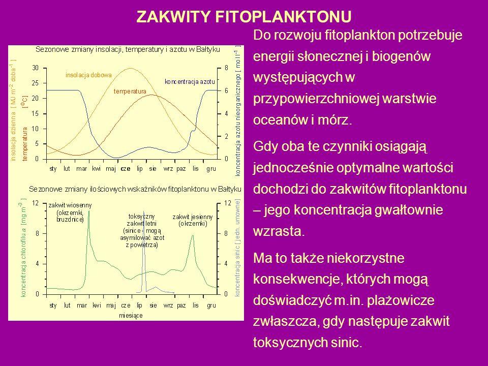 ZAKWITY FITOPLANKTONU
