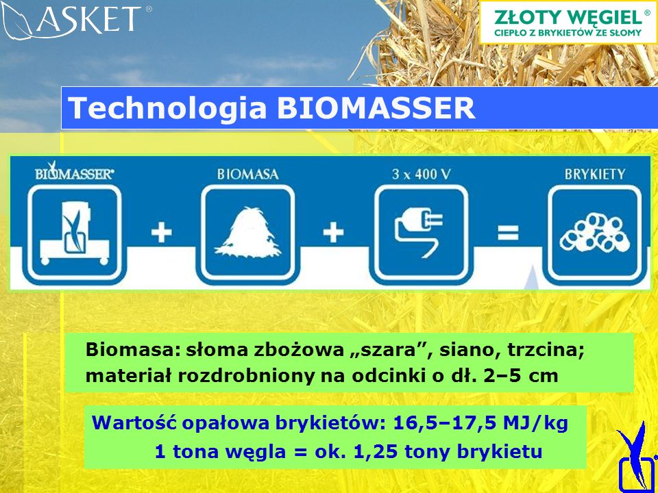 Technologia BIOMASSER