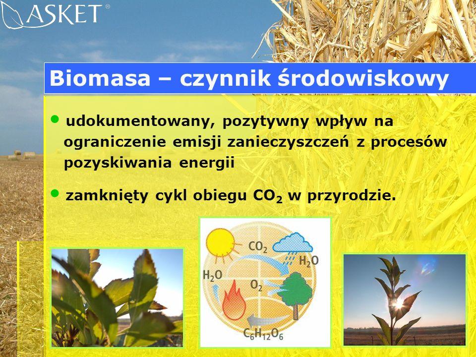 Biomasa – czynnik środowiskowy