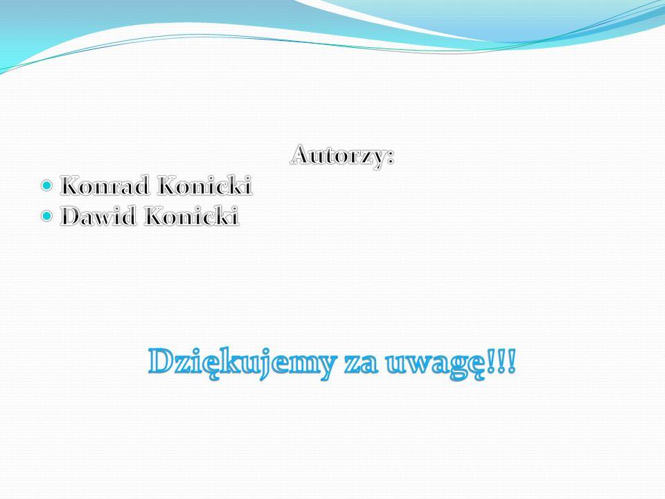 Autorzy: Konrad Konicki Dawid Konicki Dziękujemy za uwagę!!!