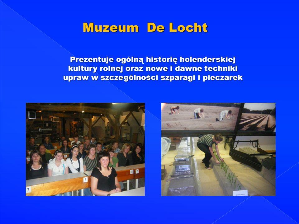 Muzeum De LochtPrezentuje ogólną historię holenderskiej kultury rolnej oraz nowe i dawne techniki upraw w szczególności szparagi i pieczarek.