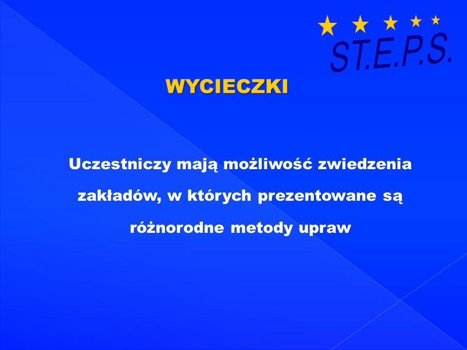 ST.E.P.S. WYCIECZKI.