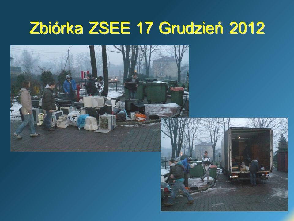 Zbiórka ZSEE 17 Grudzień 2012