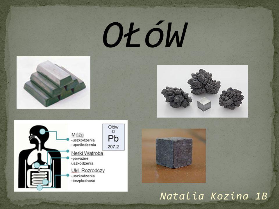 OŁóW Natalia Kozina 1B