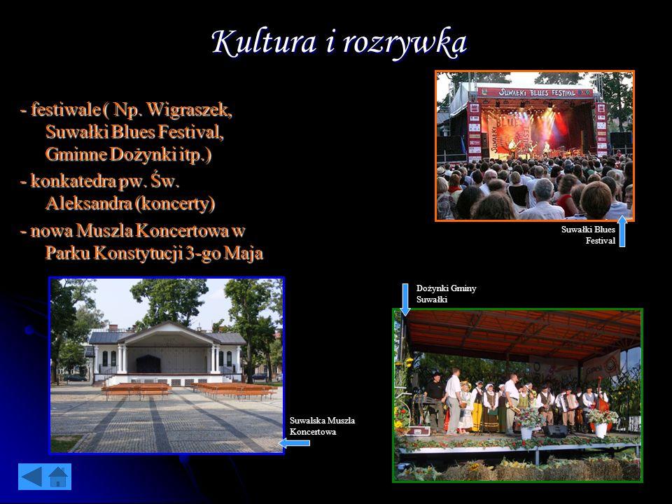 Kultura i rozrywka - festiwale ( Np. Wigraszek, Suwałki Blues Festival, Gminne Dożynki itp.) - konkatedra pw. Św. Aleksandra (koncerty)