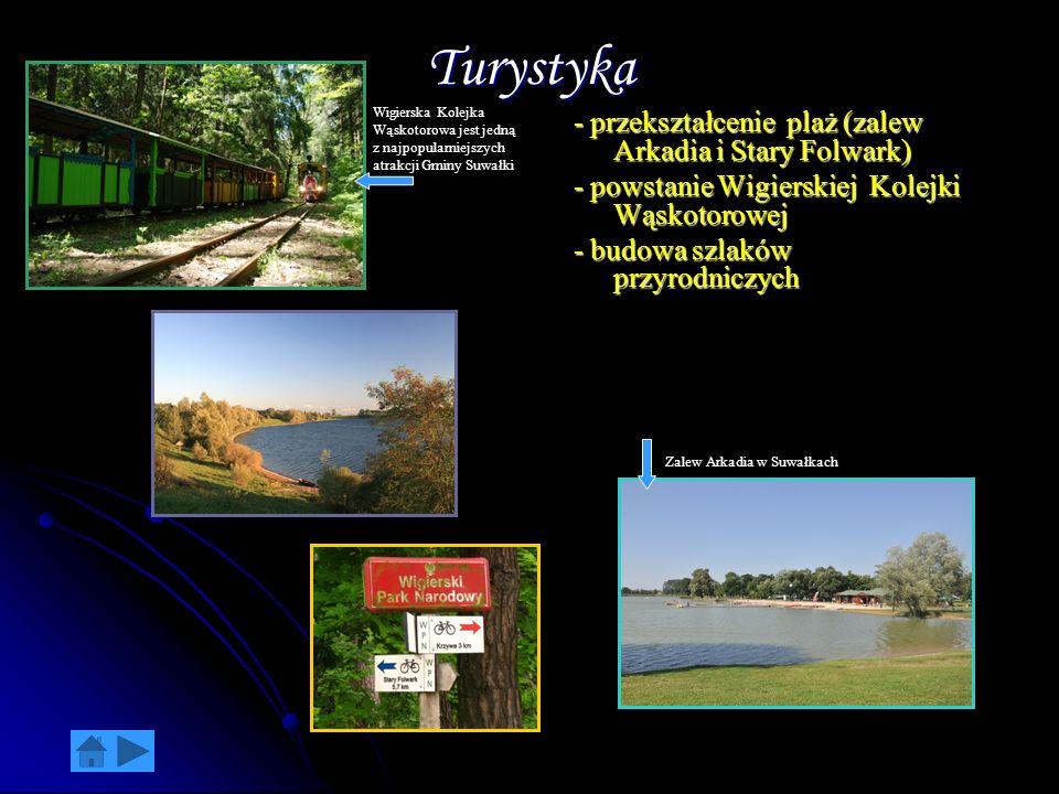 Turystyka - przekształcenie plaż (zalew Arkadia i Stary Folwark)