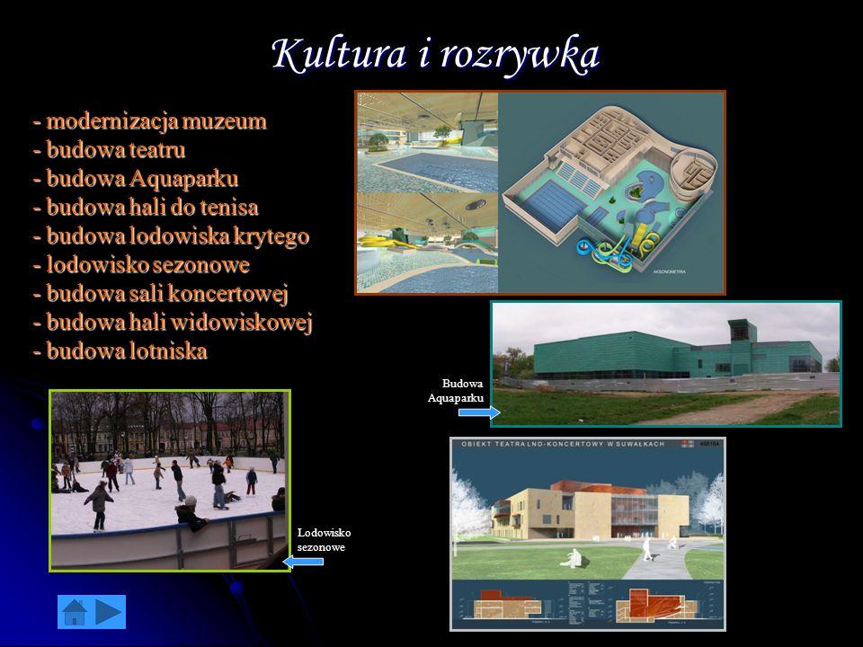 Kultura i rozrywka - modernizacja muzeum - budowa teatru