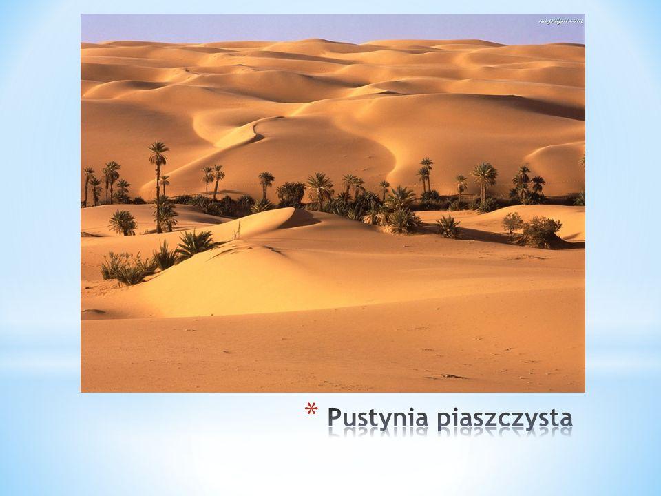 Pustynia piaszczysta