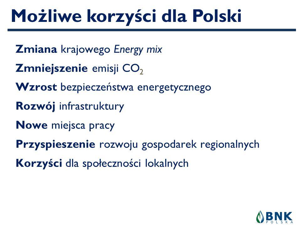 Możliwe korzyści dla Polski