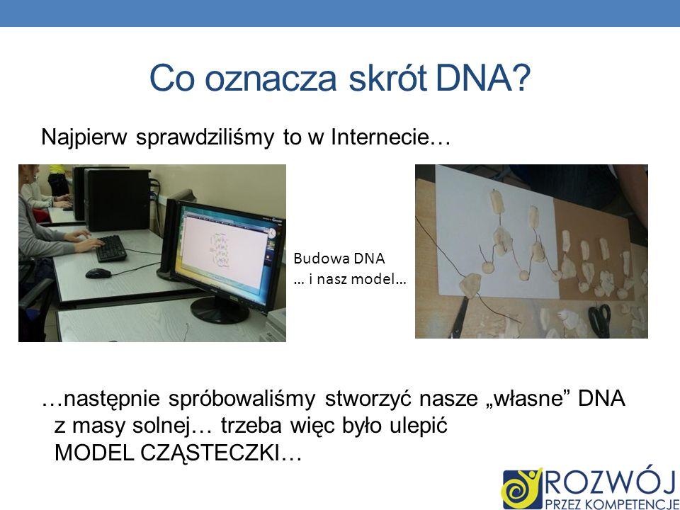 Co oznacza skrót DNA Najpierw sprawdziliśmy to w Internecie…