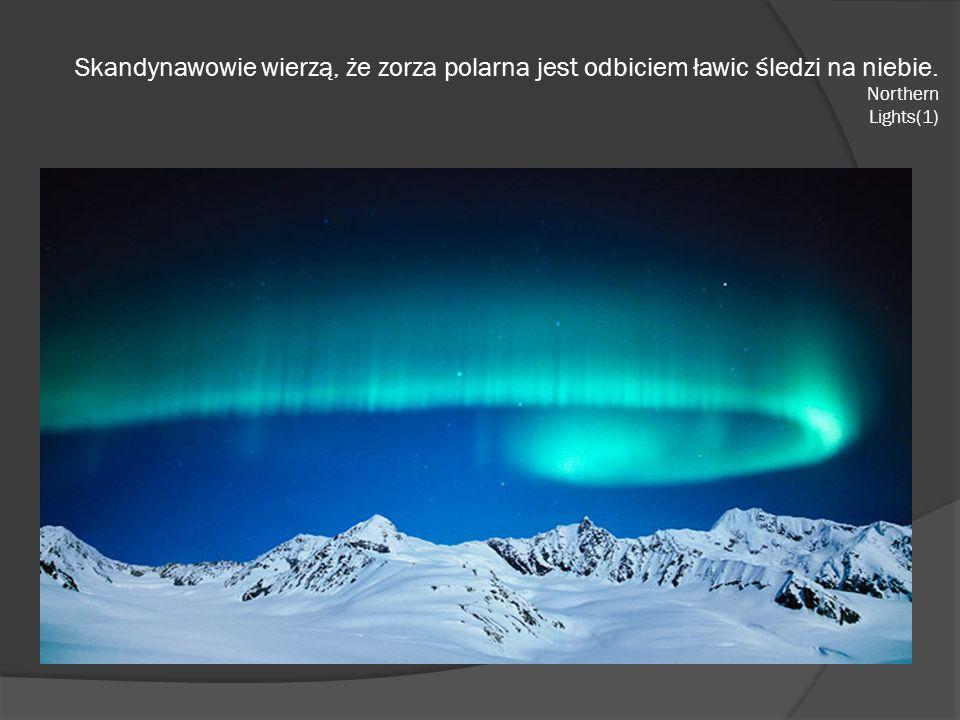 Skandynawowie wierzą, że zorza polarna jest odbiciem ławic śledzi na niebie. Northern Lights(1)