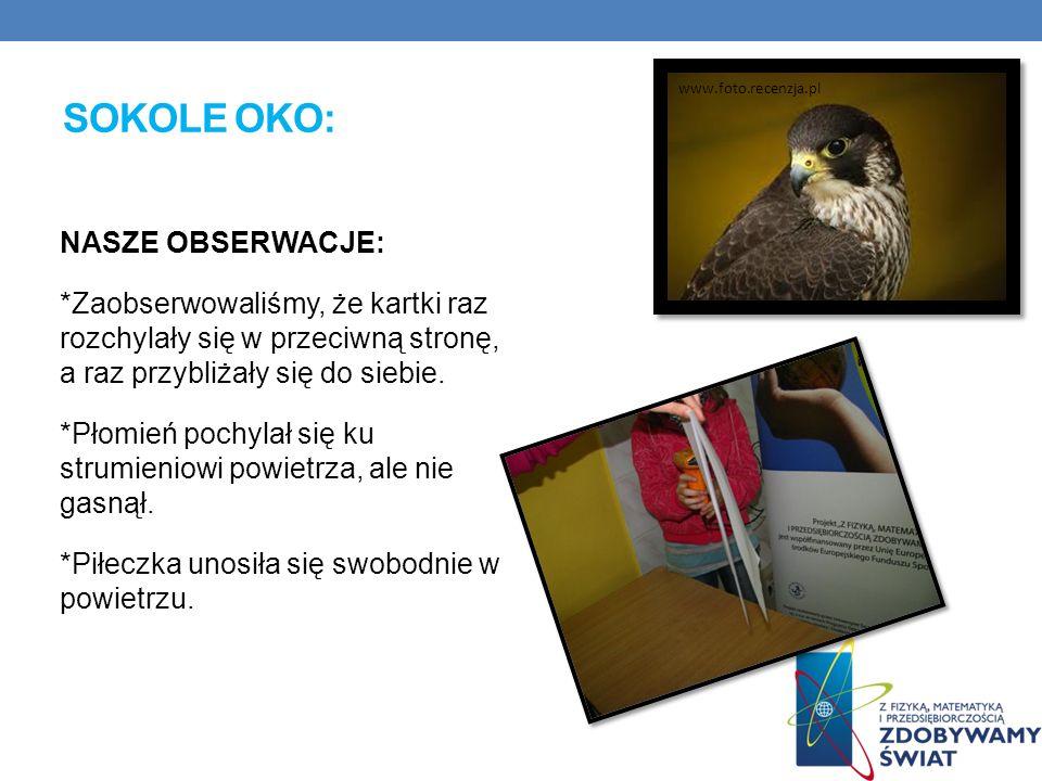 sokole oko: www.foto.recenzja.pl.