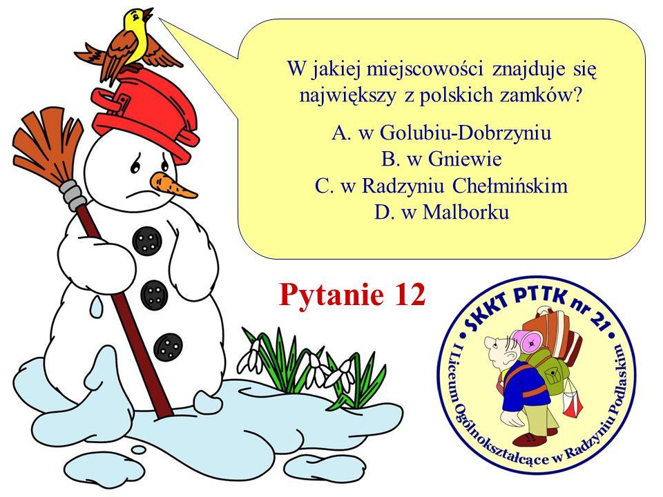 W jakiej miejscowości znajduje się największy z polskich zamków