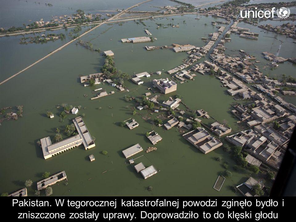 Pakistan. W tegorocznej katastrofalnej powodzi zginęło bydło i zniszczone zostały uprawy.