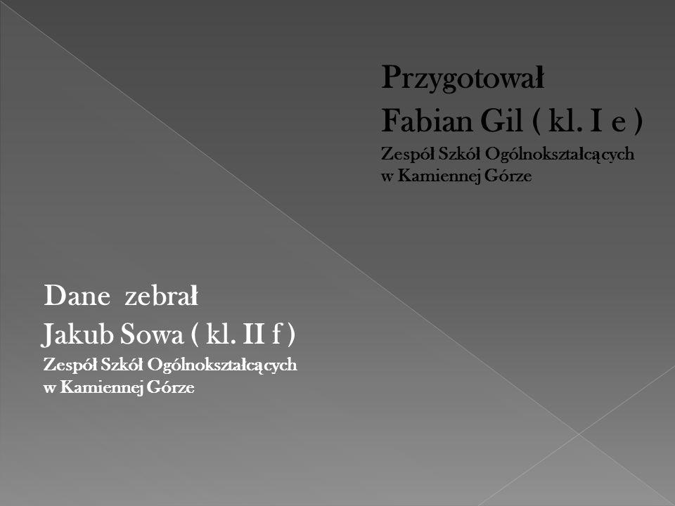 Fabian Gil ( kl. I e ) Dane zebrał Jakub Sowa ( kl. II f ) Przygotował