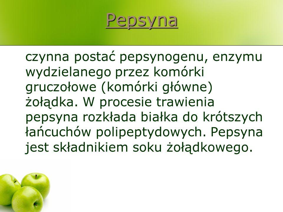 Pepsyna